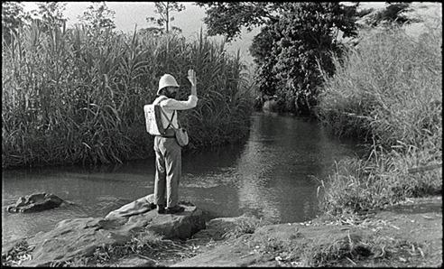 El explorador que se arroja a los cocodrilos