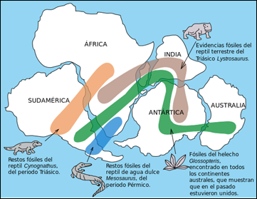 Snider-Pellegrini_Wegener_fossil_mapa_es.svg