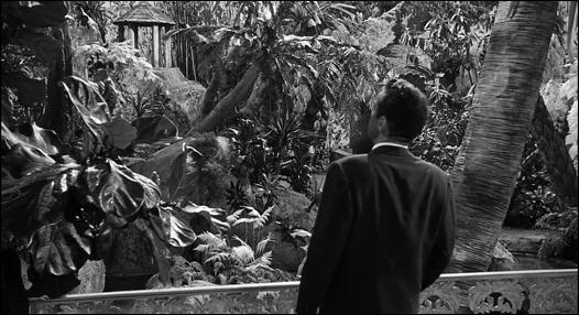 Montgomery Clift ante el jardín jungla de los Venable