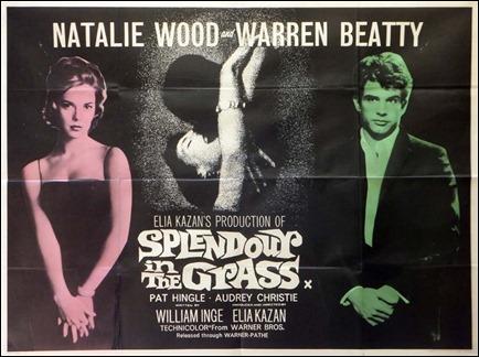 Curioso poster original de Esplendor en la hierba