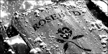 Rosebud desvaneciendose entre las llamas
