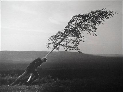 Inolvidable Max Von Sydow arrancando el arbol en El manantial de la doncella